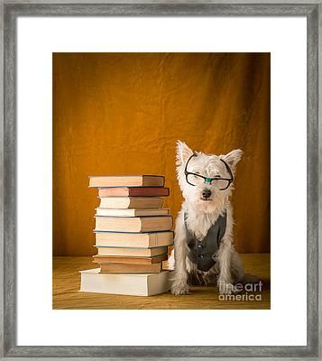 Smartie Framed Print by Edward Fielding