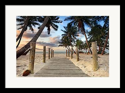 Florida - Usa Framed Prints