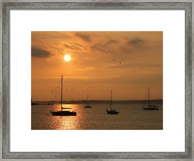 Smell The Sea Framed Print by Lori Deiter