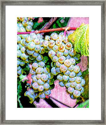 Smell The Vintage I Framed Print by Ken Evans