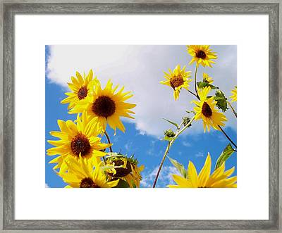 Smile Down On Me Framed Print