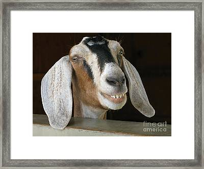 Smile Pretty Framed Print
