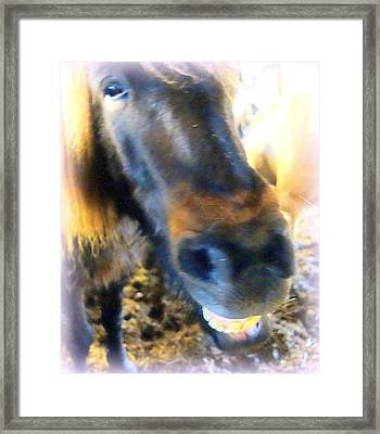 smile to me or I will bite you  Framed Print
