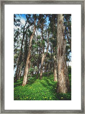 Smiles And Laughter Framed Print by Laurie Search