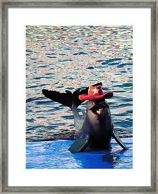 Smiley Dolphin Framed Print by Sarode Nimmanwattana