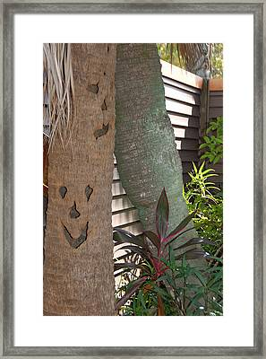 Smiley Tree Framed Print by Aimee L Maher Photography and Art Visit ALMGallerydotcom
