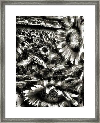 Smilin Atchya Framed Print