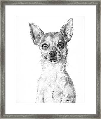 Smiling Chihuahua In Charcoal Framed Print by Kate Sumners