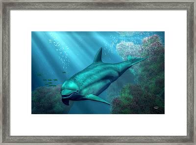 Smiling Dolphin Framed Print by Daniel Eskridge
