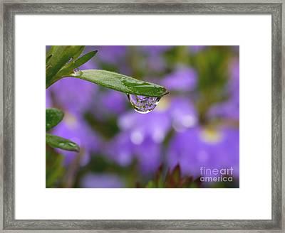 Smiling Drop Framed Print