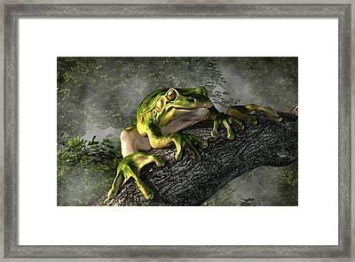 Smiling Frog Framed Print by Daniel Eskridge