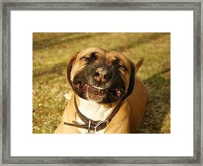 Smiling Framed Print
