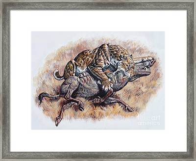Smilodon Dirk Sabertooth Killing Framed Print by Mark Hallett