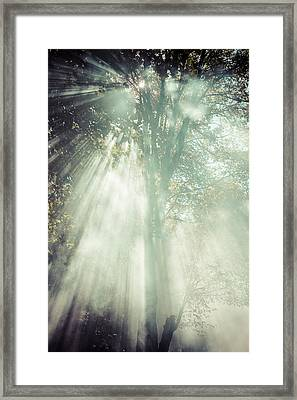 Smoke Framed Print by Chris Bordeleau