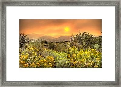 Smoke In The Air Framed Print by Dianne Phelps