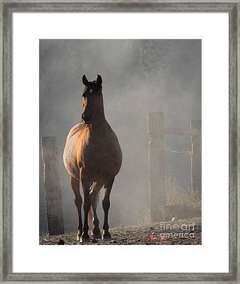 Smoke Framed Print by Rod Giffels