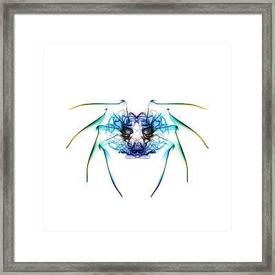Smoke Spider 2 Framed Print by Steve Purnell