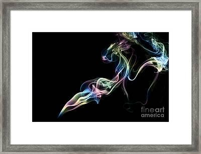 Smokey 5 Framed Print