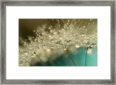 Smokey Blue Framed Print