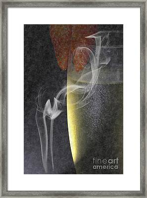 Smokey  Framed Print by Brian Roscorla