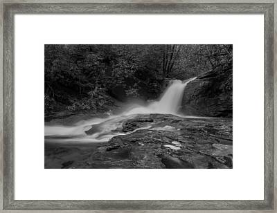 Smokey Framed Print by Debra and Dave Vanderlaan