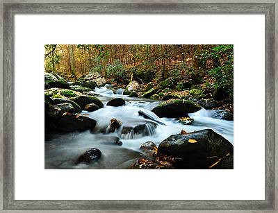 Smokey Mountain Creek Framed Print by Donald Fink