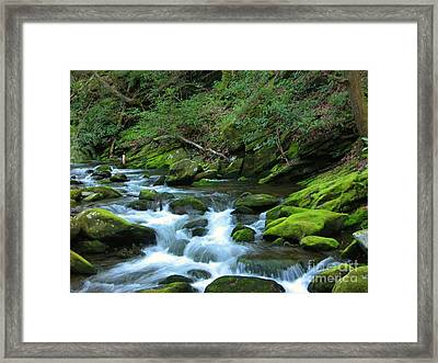 Smokey Mountain Spring Framed Print by Don F  Bradford