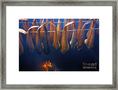 Smoking Fish Framed Print