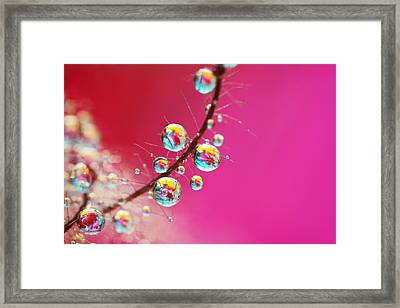 Framed Print featuring the photograph Smoking Pink Drops by Sharon Johnstone