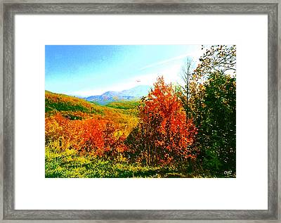 Smoky Mountain Autumn Framed Print by CHAZ Daugherty