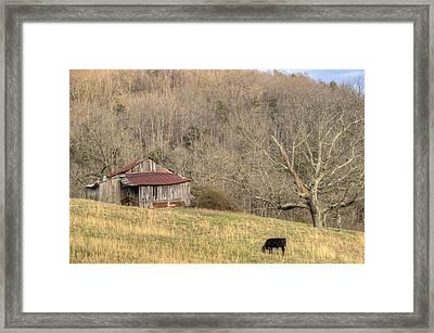 Smoky Mountain Barn 10 Framed Print by Douglas Barnett