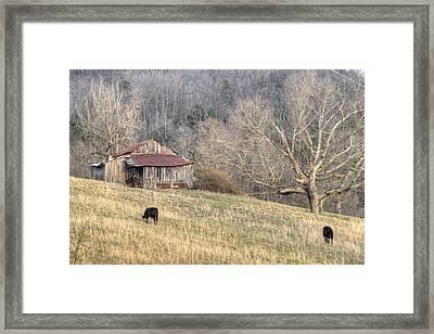 Smoky Mountain Barn 3 Framed Print by Douglas Barnett