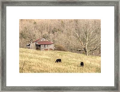 Smoky Mountain Barn 6 Framed Print by Douglas Barnett