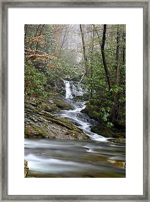 Smoky Mountain Beauty Framed Print