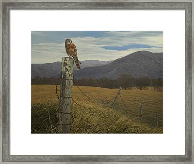 Smoky Mountain Hunter-american Kestrel Framed Print by James Willoughby III