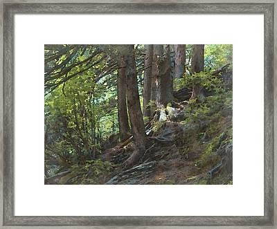 Smoky Mountain Slope Framed Print