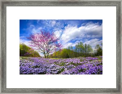 Smoky Mountain Spring Framed Print by Debra and Dave Vanderlaan