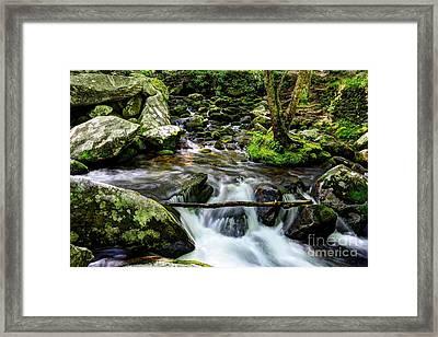 Smoky Mountain Stream 4 Framed Print by Mel Steinhauer