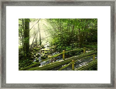 Smoky Mountain Stream Framed Print by Debra and Dave Vanderlaan