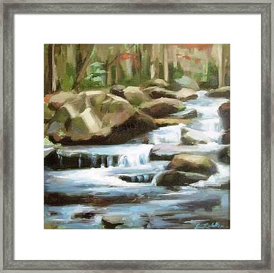 Smoky Mountain Stream Framed Print by Erin Rickelton