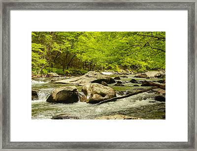 Smoky Mountain Stream Framed Print by Robert Hebert
