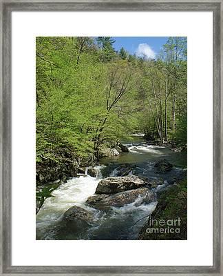 Smoky Mountain Stream Framed Print by Roger Potts