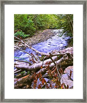 Smoky Mountain Stream Two Framed Print by Frozen in Time Fine Art Photography