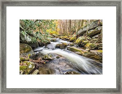 Smoky Mountain Stream 4 Framed Print