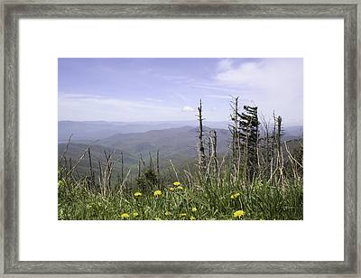 Smoky Mountain View Tennessee Framed Print by Erin Cadigan