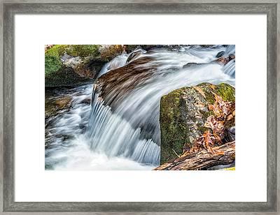 Smoky Mountain Stream 5 Framed Print