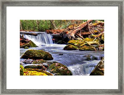 Smoky Mountain Waterfall Framed Print