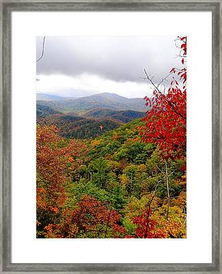 Smoky Mountains In The Fall Framed Print by Dan Sproul