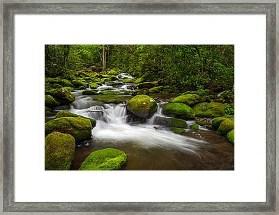 Smoky Mountains Paradise - Great Smoky Mountains Gatlinburg Tn Framed Print by Dave Allen