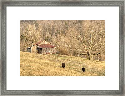 Smoky Mountian Barn 7 Framed Print by Douglas Barnett